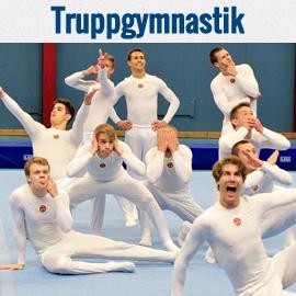 tävlingar 2018 gymnastik